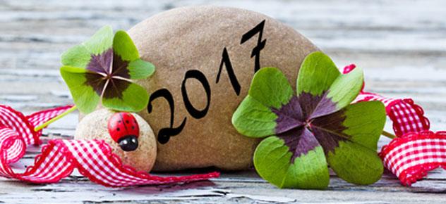 Ein frohes neues Jahr 2017!